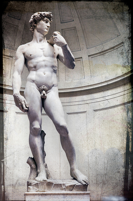 David di Michelangelo - Galleria dell'Accademia (Firenze)